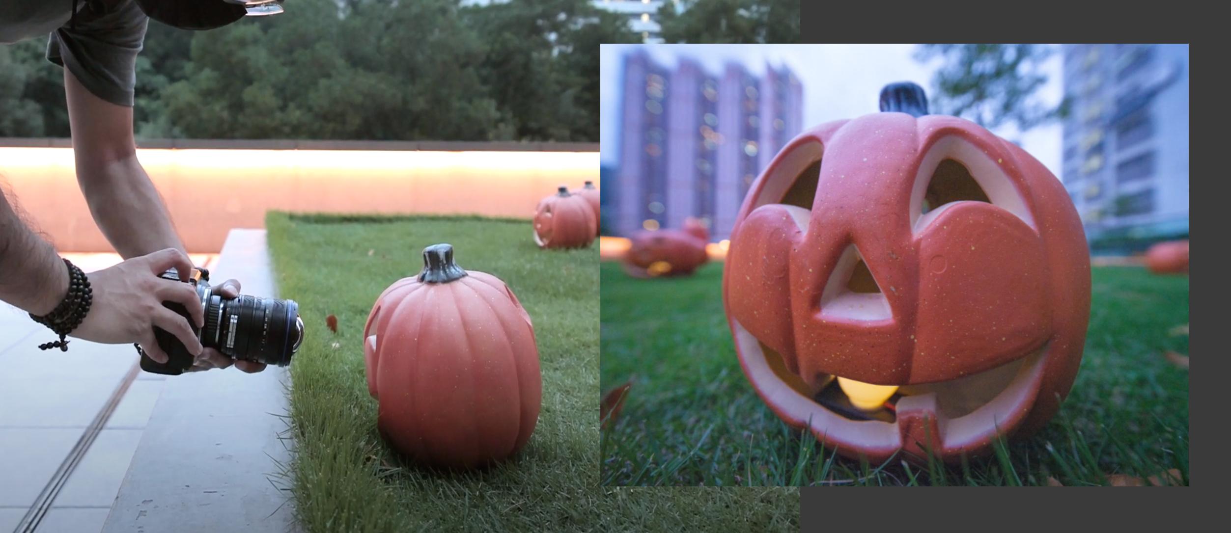 [Pumpkin photo on Halloween]